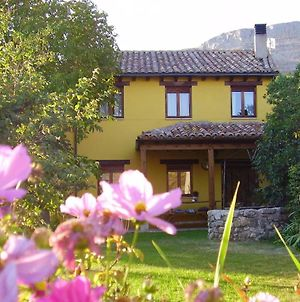 House With 5 Bedrooms In Amaya With Wonderful Mountain View Enclosed Garden And Wifi 92 Km From The Slopes photos Exterior