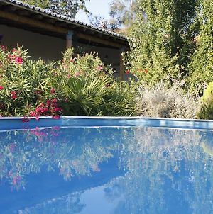 House With One Bedroom In Castro Marim With Wonderful Mountain View Shared Pool Furnished Terrace 11 Km From The Beach photos Exterior