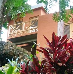 House With 3 Bedrooms In Las Galeras With Wonderful Sea View Enclosed Garden And Wifi 200 M From The Beach photos Exterior