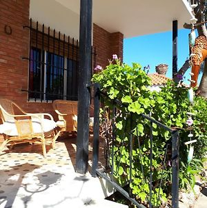 House With 3 Bedrooms In Alcanar With Enclosed Garden And Wifi 100 M From The Beach photos Exterior