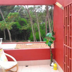 House With 2 Bedrooms In Apulia With Furnished Terrace And Wifi 700 M From The Beach photos Exterior
