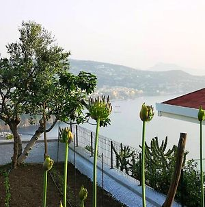 Apartment With One Bedroom In Vico Equense, With Wifi photos Exterior