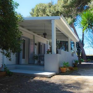 Property With 2 Bedrooms In Augusta Sr With Enclosed Garden And Wifi 30 Km From The Beach photos Exterior