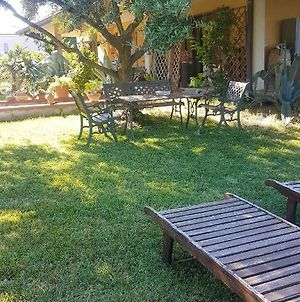 Apartment With 2 Bedrooms In San Mauro Pascoli With Wonderful Lake View Enclosed Garden And Wifi 3 Km From The Beach photos Exterior