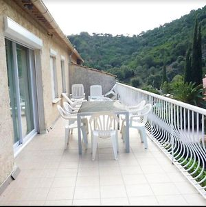 House With 3 Bedrooms In Cavalaire Sur Mer With Wonderful Mountain View Enclosed Garden And Wifi photos Exterior