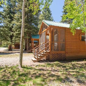 The Colorado Spruce Cabin #15 photos Exterior