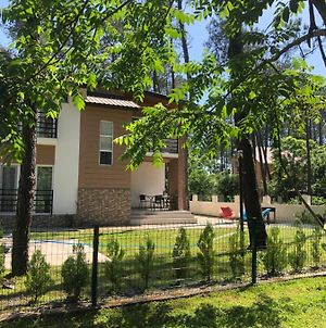 Vip Sweet Home In Shekvetili photos Exterior