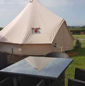 B&B Glamping Bell Tents At The Ring Pub photos Exterior