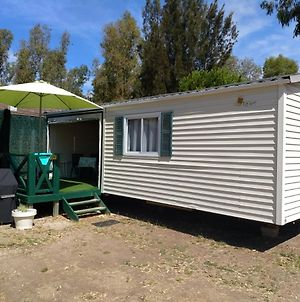 Mobil'Home Camping Hyeres Les Palmiers photos Exterior