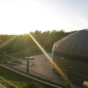 Orchard View Yurt Just Outside Looe Sleeps 4 photos Exterior