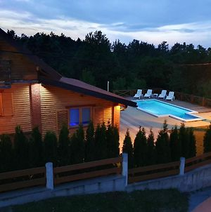 Villa With 3 Bedrooms In Gornje Dubrave With Private Pool And Wifi photos Exterior