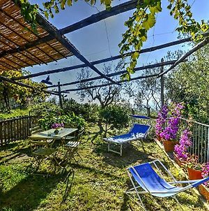 Sant'Agata Sui Due Golfi Villa Sleeps 2 Wifi photos Exterior