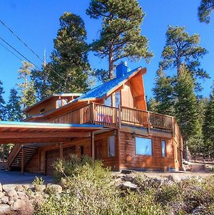 The Bass Chalet By Lake Tahoe Accommodations photos Exterior