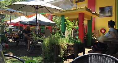 Mulgum Studio At Nimbin Bush Theatre And Cafe photos Exterior Mulgum Studio at Nimbin Bush Theatre and Cafe
